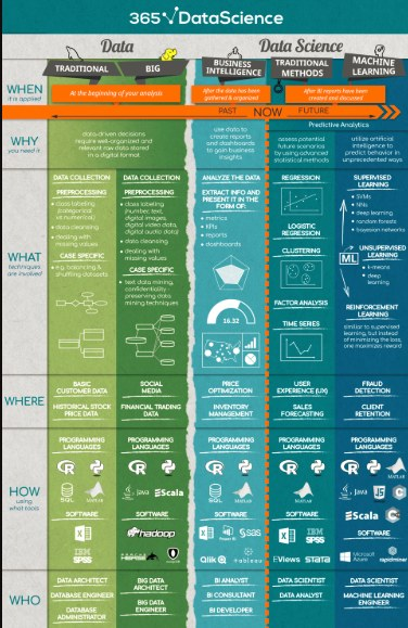 365ds Data Science Infographic
