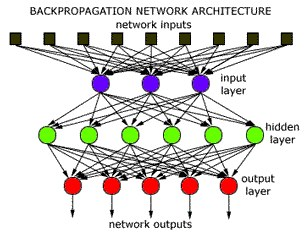 Backpropagation Neural Network