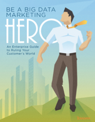 Big Data Marketing Hero