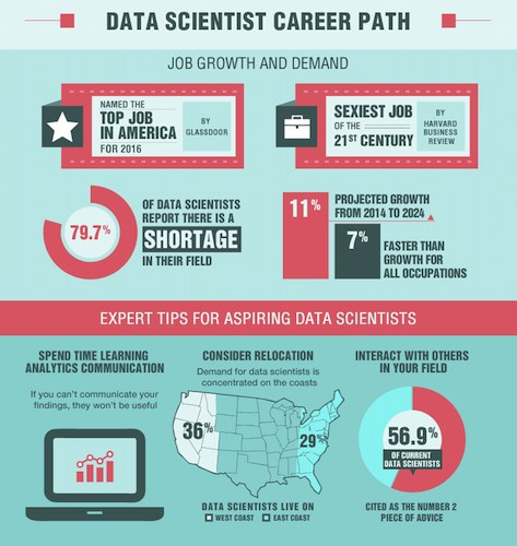 Data Scientist Career Path