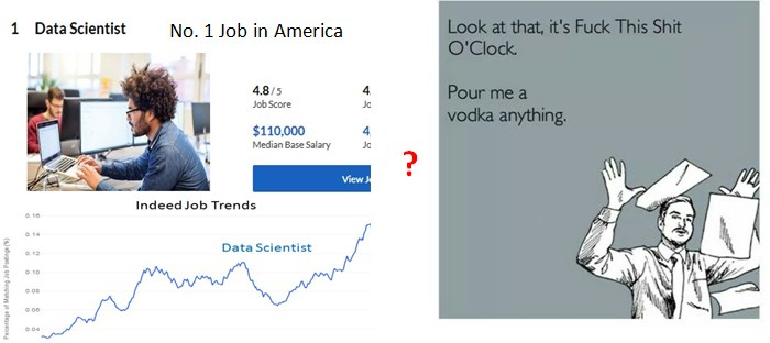 Data Scientist Job Satisfaction