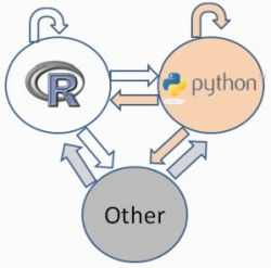 R vs Python vs Other