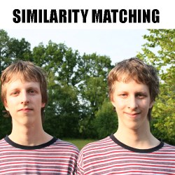 Similarity Matching