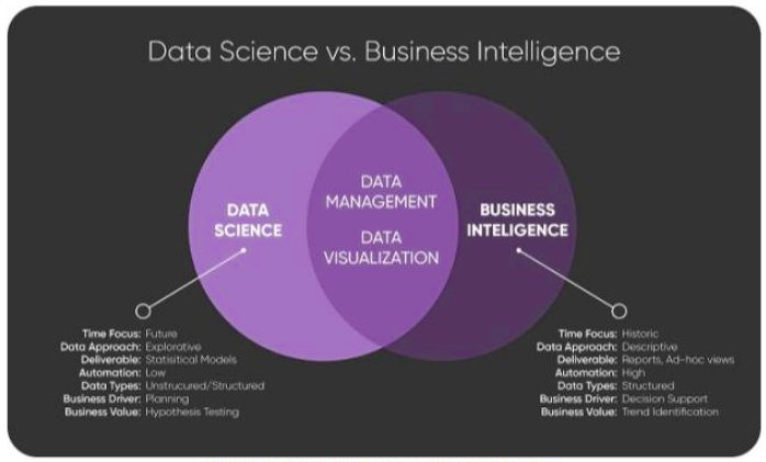 Data Science vs Business Intelligence, Explained