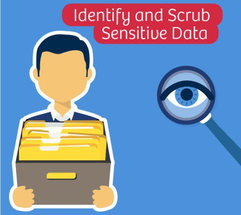 Scrub sensitive data