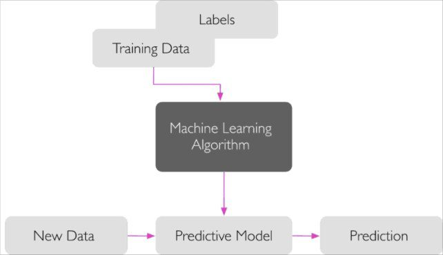 3 different types of machine learning