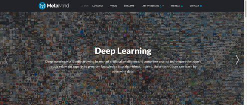 Deep learning startup MetaMind