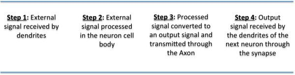 Neuron, 4 steps, caption