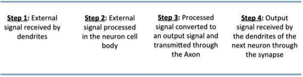 Neuron, 4 steps, caption