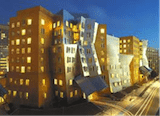 MIT Frank Gehry Building