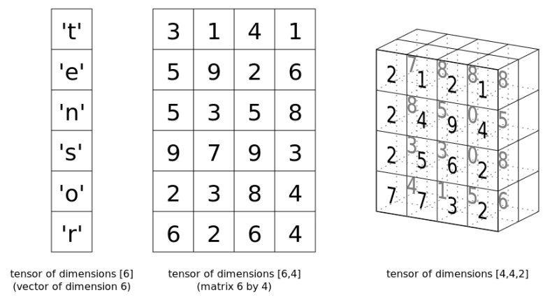 PyTorch Tensor Basics