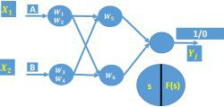 Building feed forward networks